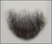 Atelier Bassi Chin Beard-C2