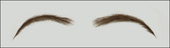 Atelier Bassi Eyebrows-E2