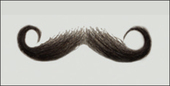 Atelier Bassi Moustache-M11