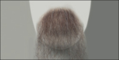 Atelier Bassi Moustache-M12