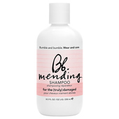 Mending Shampoo 8.5 fl oz