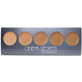 Cinema Secrets Ultimate Foundation 5-In-1 Pro Palette 400 Series - 12.5 g