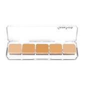 Cinema Secrets Foundation Kit Palette #6