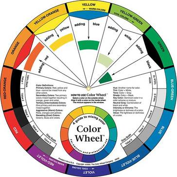 "Color Wheel  9.25"" Two sided"