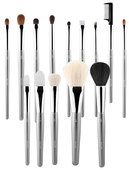 Esum Pro Essential Brush Set