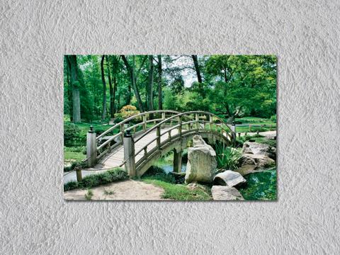 Puente de rio