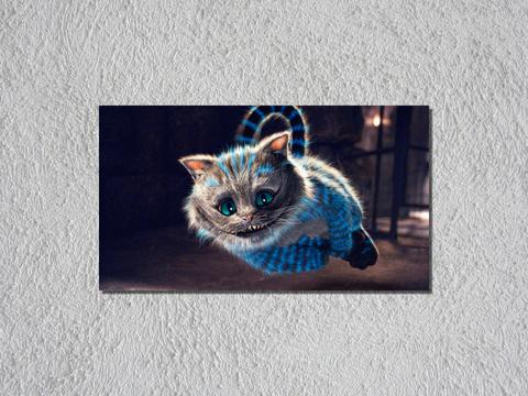 Alicia gato