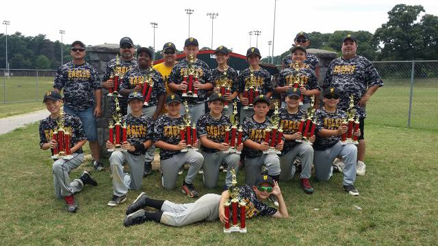 2014.  The 12U All-Stars went undefeated in two post-season tournaments hosted by Linthicum-Ferndale and Glen Burnie Boys Baseball.