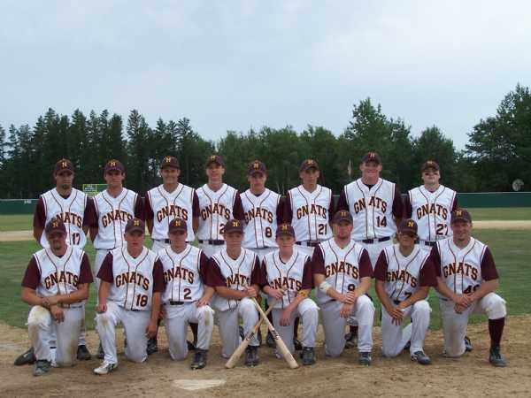 A picture of the 2007 Gnats team.  Lake and Pine South regular season and playoff champions.