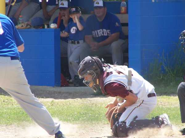 Gnats catcher Trevor Ness blocking a pitch at Midway.  #12 was an absolute beast behind the plate all season for the Gnats.