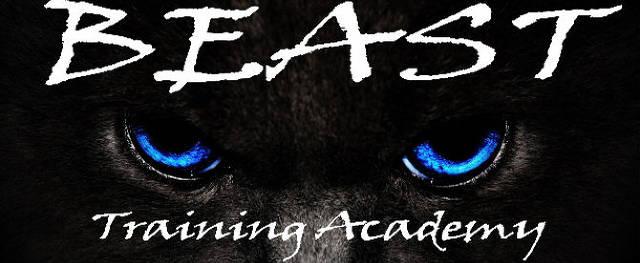 http://www.beasttrainingacademy.com