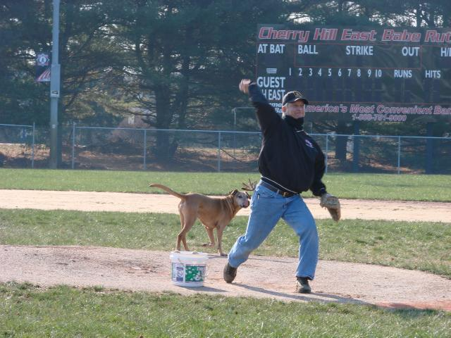 Moorestown Marlins manager Joe Basara delivers a pitch as four-legged partner Bandit Basara plays in for the bunt at Winterball 2010