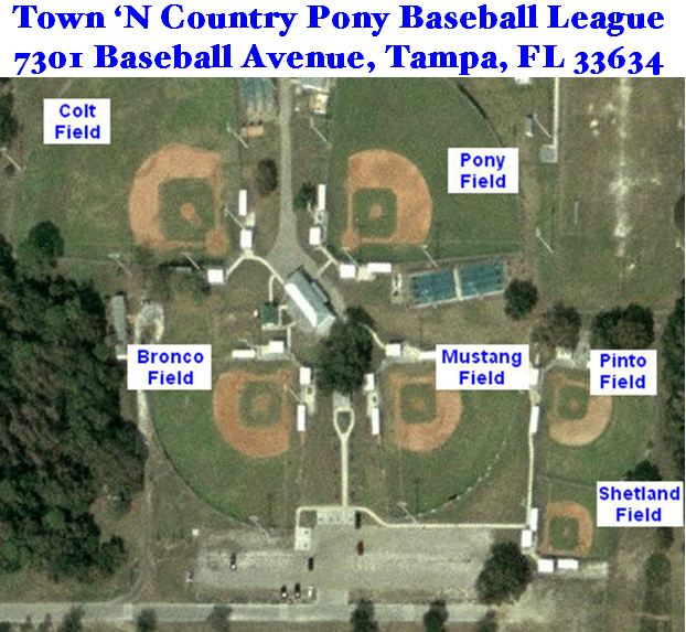 Tampa Town N Country Baseball Tampa Fl Powered By Leaguelineup Com