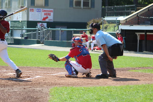 Bisons Den Linehan behind the dish