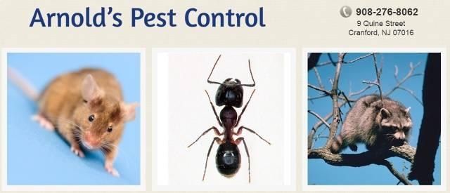 Arnolds Pest Control