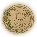 Dunedin Youth Guild