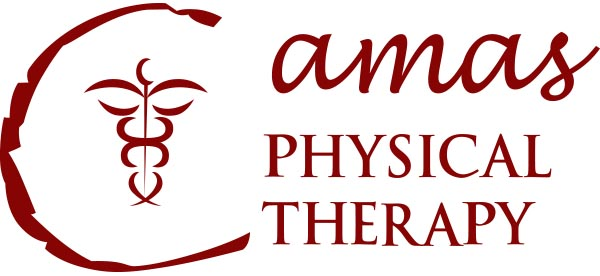 http://www.camasphysicaltherapy.com