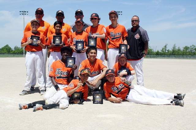 MNBA Tigers 1