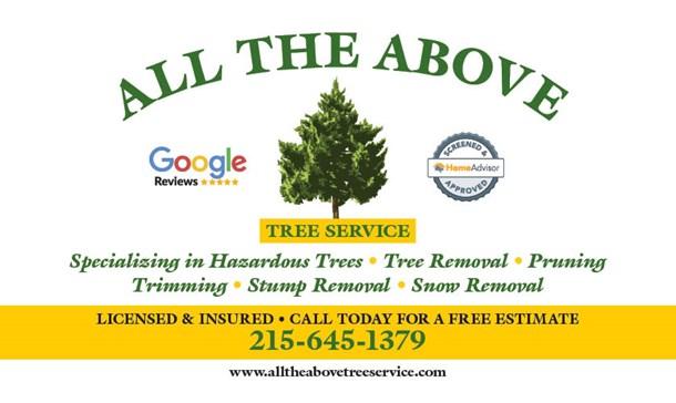 http://www.treeservicecompanybensalem.com