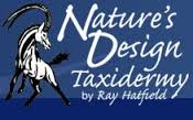 http://www.naturesdesigntaxidermy.com