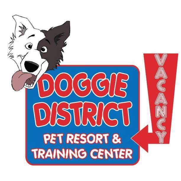 http://doggiedistrict.com