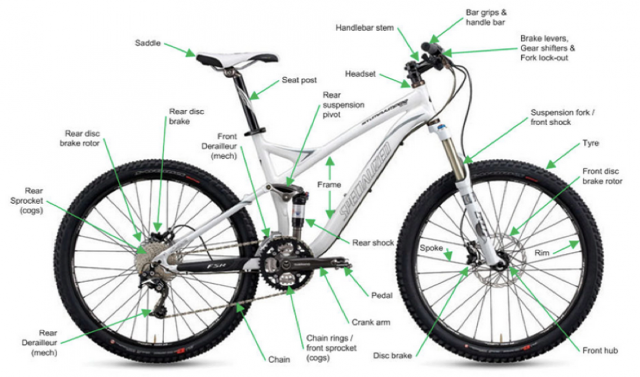 Elements of a Mountain Bike
