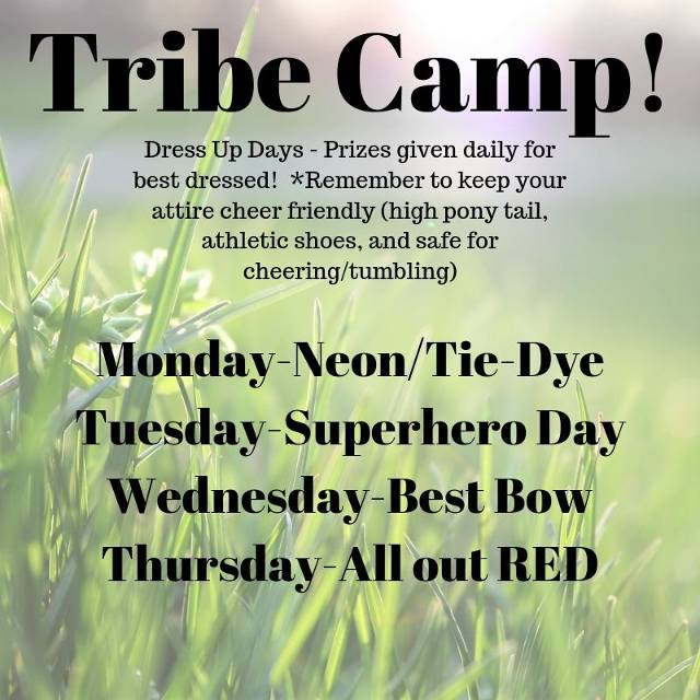 Dress up days listing for Tribe Camp