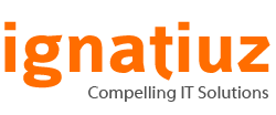Ignatiuz Software Pvt. Ltd.