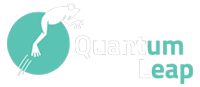 Quantum Leap Technologies