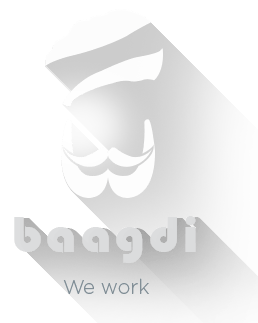 Baagdi Solutions Pvt. Ltd.