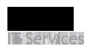 Friends IT Services Pvt Ltd