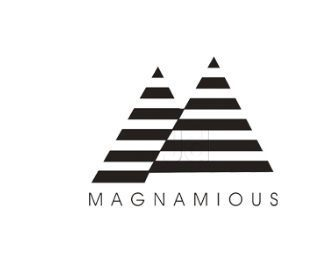 Magnamious Systems Private Limited