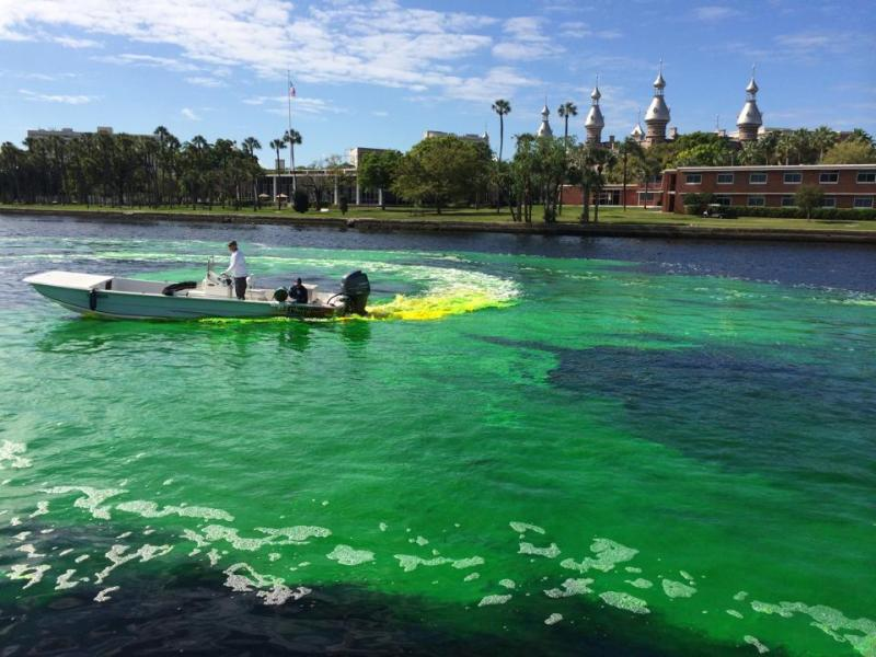 St Patrick's Day Weekend 2015   Best Parties, Events + More!