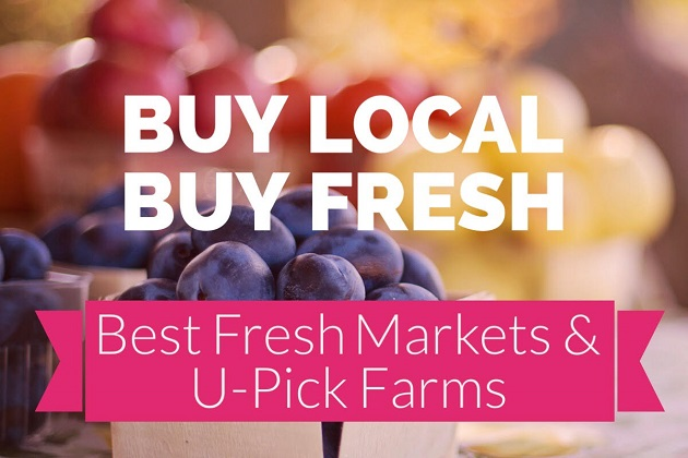 Veg Out at the Best Fresh Markets and U-Pick Farms in Tampa Bay