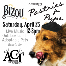 Pastries for Pups | Le Méridien Tampa | April 25th
