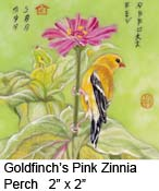 Goldfinch's Pink Zinnia Perch c