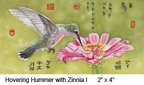Hovering Hummer with Zinnia I c