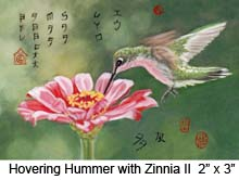 Hovering Hummer with Zinnia II c