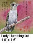 Lady Hummingbird 1.6 x 1.6 c