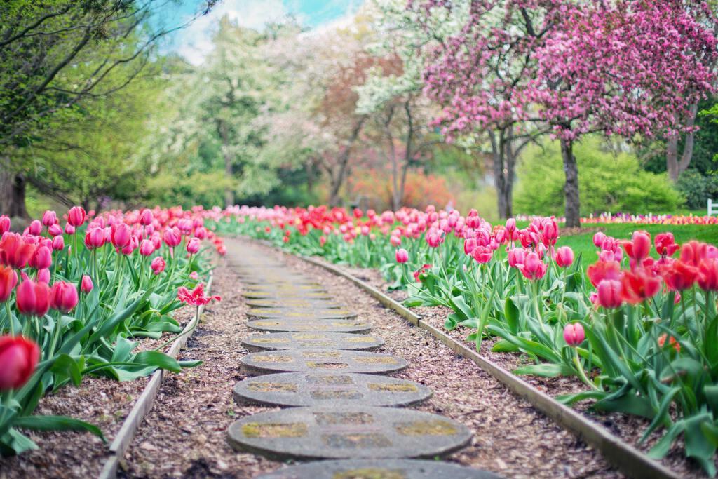 landscaping-garden-pathway-marietta-square.jpg