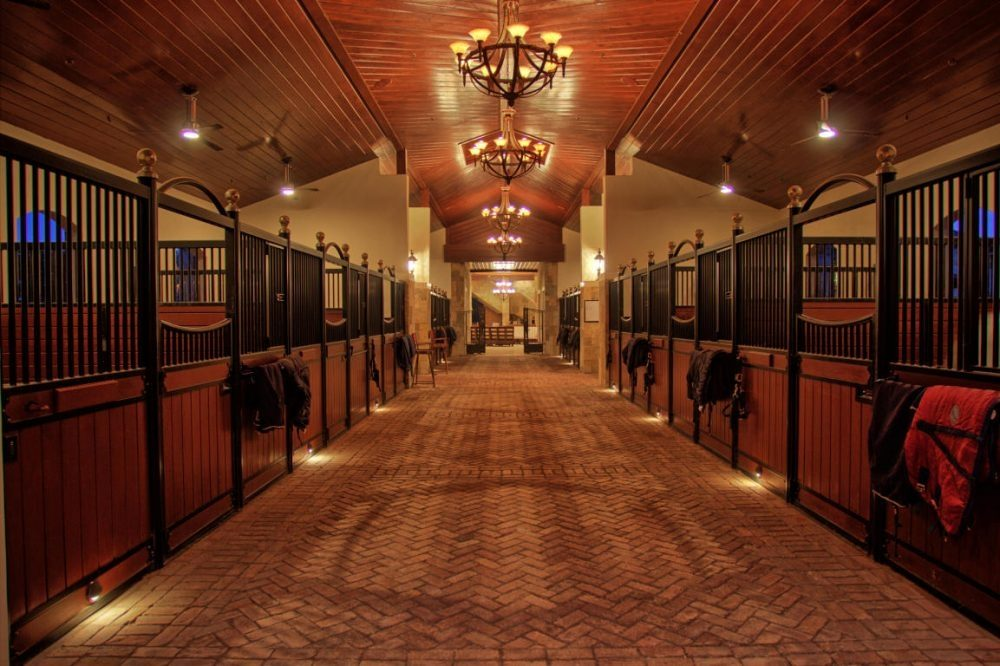 New Group Equestrian Stable Goals