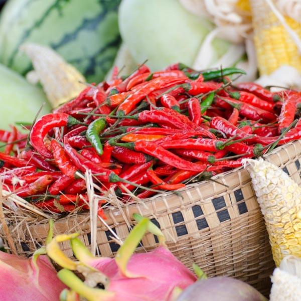 Chili Pepper Thai Dragon Capsicum Annuum My Garden Life