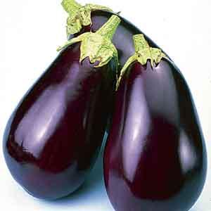 Eggplant, Aubergine