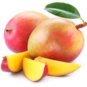 Common Mango, Indian Mango