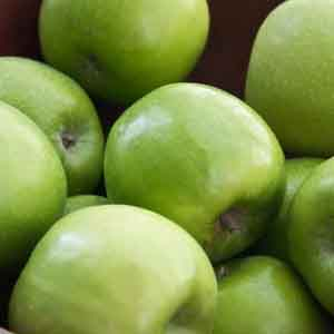 Apple 'Granny Smith' (Malus pumila)