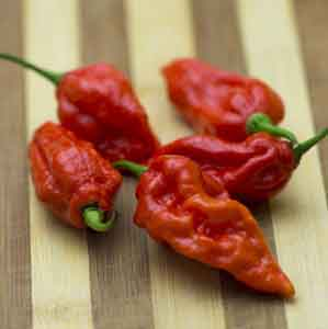 Chili Pepper, Ghost Pepper