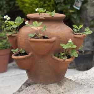 Strawberry Pocket Planter