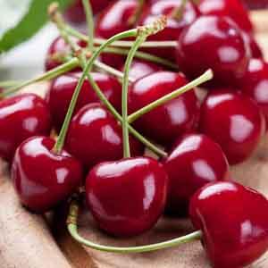 Dwarf Cherry
