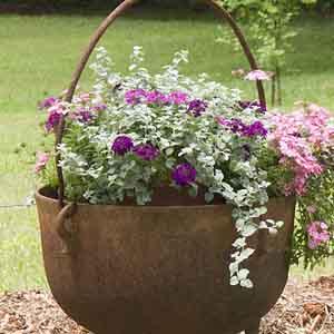 Cauldron/ Kettle Planter