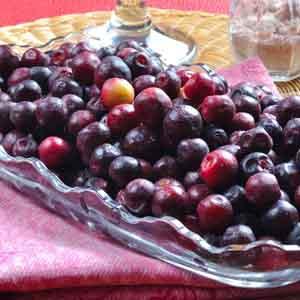 Phalsa, Dessert Berry